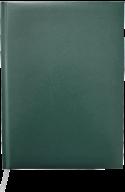 Ежедневник недат. MASTER, A5, клетка, зеленый, бумвинил/поролон