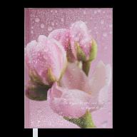 Ежедневник недат. POSH, A5, розовый