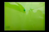 ^$Папка-конверт, на кнопке, А4, глянцевый полупроз.пластик, салатовая